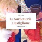 ボローニャで世界一のソルベ、ソルベッテリア・カスティリオーネ【Sorbetteria Castiglione】