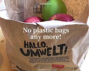 レジ袋、有料化だけじゃない、ドイツではこの袋も無くなりつつあります