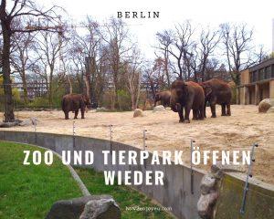 ベルリンの動物園、今日から営業再開