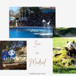 マドリード動物園&水族館 【Zoo Aquarium de Madrid】は大人も楽しめるスポット